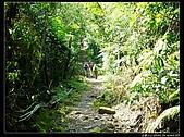 白雞三山:白雞山、雞罩山、鹿窟尖:P1000545.jpg
