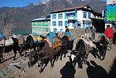 尼泊爾-聖母峰基地營(EBC)3/18-3/20:DSC_0055.JPG