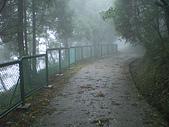七星山夢幻湖:IMGP1325.JPG