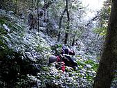 20100109 南插天山:IMGP4508.jpg