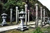 104/02/08 金瓜石_石尾古道、黃金神社、百二崁古道:DSCN2978_DSC_0134.JPG