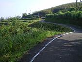 草嶺古道桃源谷:IMGP1867.JPG