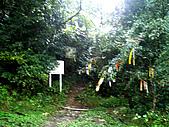 多崖山:IMGP3289.jpg