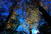 北得拉曼 內鳥嘴山:DSC_4825O.jpg