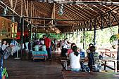 2009/12/22 沙巴亞庇 -長鼻猴生態螢河保護區:DSC_8821.jpg