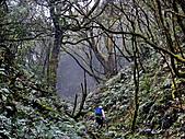 滿月圓檜谷線上多崖山:P1080955.jpg