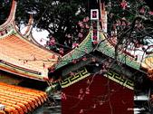 104/02/08 金瓜石_石尾古道、黃金神社、百二崁古道:DSCN2935_3.jpg
