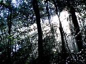 多崖山:IMGP3293.jpg