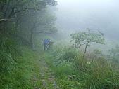 陽明山三池-向天池,七星池,夢幻湖:IMGP1897.JPG