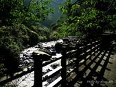 100/11/05 組合山,滿月圓山,處女瀑布:P1000072.jpg