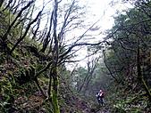 滿月圓檜谷線上多崖山:P1080956.jpg