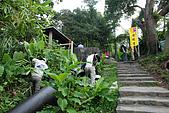 炎夏水管路半嶺水圳清涼行:DSC_2234.JPG