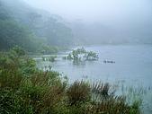 陽明山三池-向天池,七星池,夢幻湖:IMGP1898.jpg