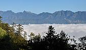 南湖大山5/14:DSC_0956.JPG