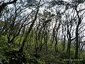 滿月圓檜谷線上多崖山:P1080957.jpg