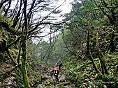 滿月圓檜谷線上多崖山:P1080958.jpg