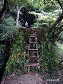 108/08/17 西勢坑溪古道:DSCN9947.jpg