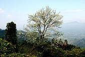 馬拉邦山:DSC_5211.jpg