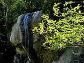 關西鳥嘴山:IMGP2579.jpg