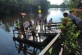 2009/12/22 沙巴亞庇 -長鼻猴生態螢河保護區:DSC_8826.jpg