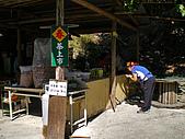 東埔彩虹瀑布:IMGP2237.jpg