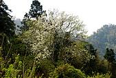 馬拉邦山:DSC_5212.jpg