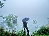 陽明山三池-向天池,七星池,夢幻湖:IMGP1904.jpg