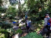 104/04/03 雙溪_蝙蝠山、苕谷瀑布、苕谷坑山:DSCN4950.jpg