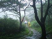 陽明山三池-向天池,七星池,夢幻湖:IMGP1905.JPG