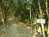 基隆五坑山:P1040796.JPG