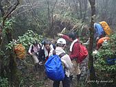 滿月圓檜谷線上多崖山:P1080964JPG