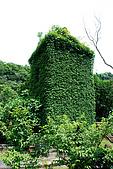 圓山水神社:DSC_1820.JPG