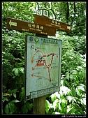 白雞三山:白雞山、雞罩山、鹿窟尖:P1000551.jpg