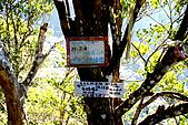 北得拉曼 內鳥嘴山:DSC_4673.jpg