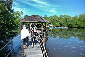 2009/12/23 馬來西亞-沙巴亞庇 -龍尾灣:DSC_8931.jpg