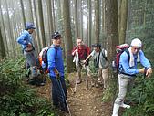 970308鵝公髻山:IMGP6615.JPG
