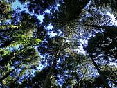 關西鳥嘴山:IMGP2591.jpg