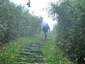 陽明山三池-向天池,七星池,夢幻湖:IMGP1911.jpg