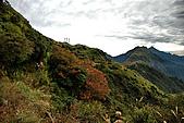 奇萊南峰南華山(二)光被八表-奇萊南峰-雲海-夕陽-日出:DSC_8060.jpg