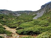 102/05/04 雪山主峰、北稜角(二):DSC_2785.JPG