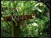 白雞三山:白雞山、雞罩山、鹿窟尖:P1000554.jpg