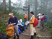 滿月圓檜谷線上多崖山:P1080871.JPG