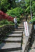 圓山水神社:DSC_1811.jpg