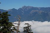 南湖大山5/14:DSC_0992.JPG