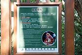 炎夏水管路半嶺水圳清涼行:DSC_2243.JPG