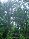 陽明山三池-向天池,七星池,夢幻湖:IMGP1960.jpg