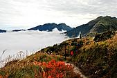 奇萊南峰南華山(二)光被八表-奇萊南峰-雲海-夕陽-日出:DSC_8074.jpg