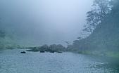 陽明山三池-向天池,七星池,夢幻湖:IMGP1936.jpg