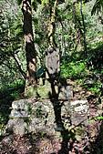 2010/01/10錐麓古道  斷崖駐在所—錐麓斷崖—巴達岡:DSC_9662.jpg