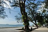 2009/12/24 馬來西亞-沙巴亞庇 -丹絨亞路海灘:DSC_9236.jpg